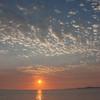 2014West Beach Picnic11475.jpg