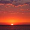 2014West Beach Picnic11509.jpg