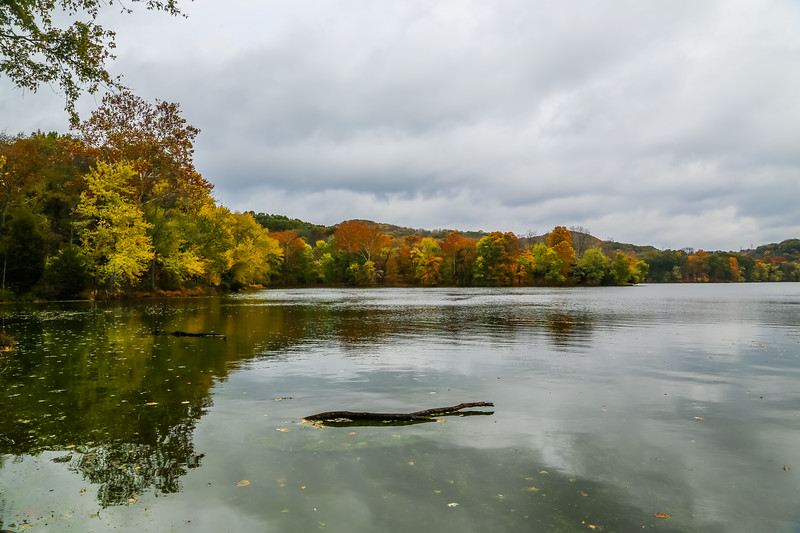 Radnor Lake near Franklin, TN