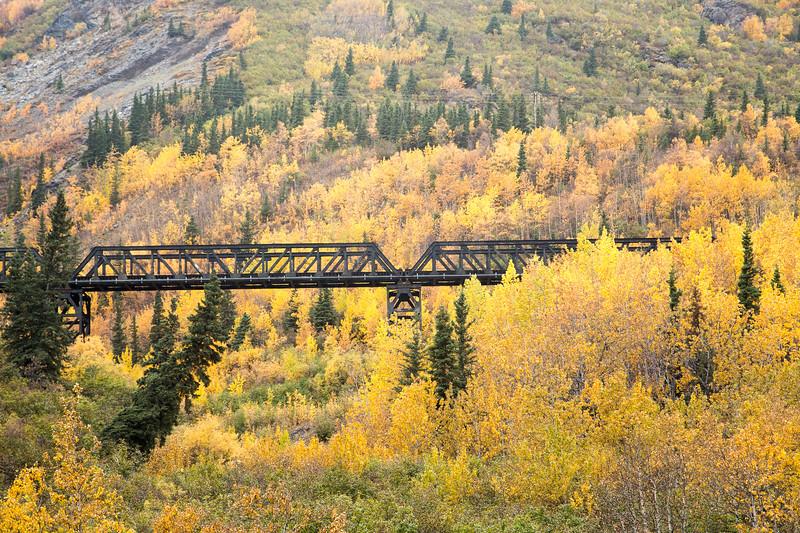 Parks Highway near Denali National Park