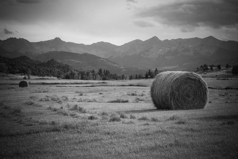 Farm near Ridgeway, CO