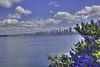 Downtown Seattle 5