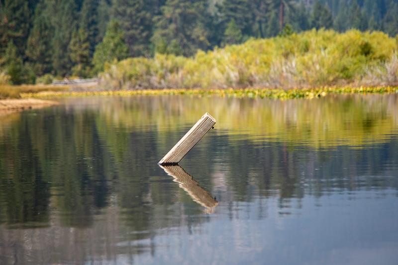 Pond near Lake Tahoe, NV