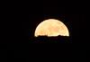 Super Moon over Anthem, AZ Nov. 14, 2016