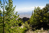 Looking West from Sandia Crest- Albuquerque, NM