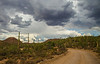 Monsoon over Saguaro National Park