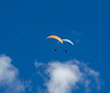 Paragliders Above the Sandias- Albuquerque, NM