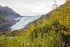 Exit Glacier- Kenai National Park, AK