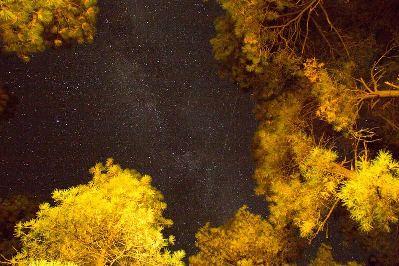 Stars Above Flagstaff