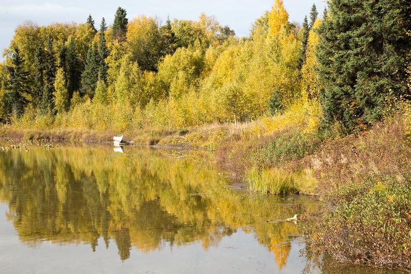 Little Montana Lake- Talkeetna, AK