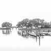 Historic Corolla Park (B&W)