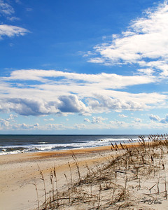 Beach at Pea Island