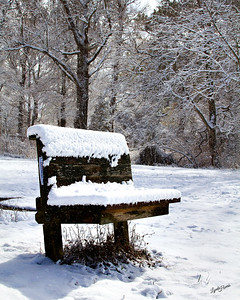 Bench in snow 300