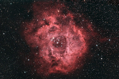 "NGC 2237 - The Rosette nebula - so called because it resembles a rose.  This emission nebula is a star forming region lying 5,200 light years away in the constellation Monoceros - the unicorn. It is an enormous object covering six times the area of the full moon. It is estimated to have the mass of about 10,000 suns and to be roughly 130 light years in diameter.   ----------  Date: 12/26/09, 1/2/10, 1/8/10 Field center: RA: 06:32:11.799, DEC: +04 degrees 58' 34.875"" Field size: 2.51 x 1.68 degrees Camera: Modified Canon 300D DSLR @ 1600 and 800 ISO Filter: Astronomik CLS + 12nm Ha Total time: 9 hours 36 minutes Lens: 80mm Apo F/stop: 6.1"
