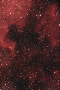 A section of NGC 7000 - The North American Nebula
