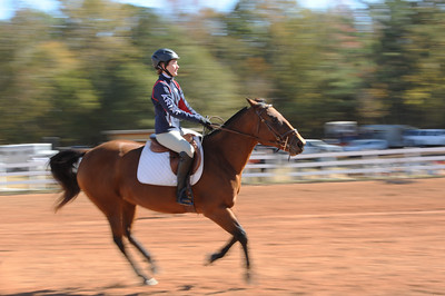 Horse Show 2016 - Phyllis Peterson