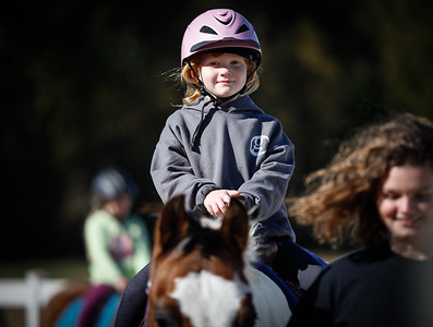 Springs Greenway Horse Show