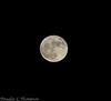 20161114 Super Moon D4S 0028