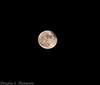 20161114 Super Moon D4S 0022