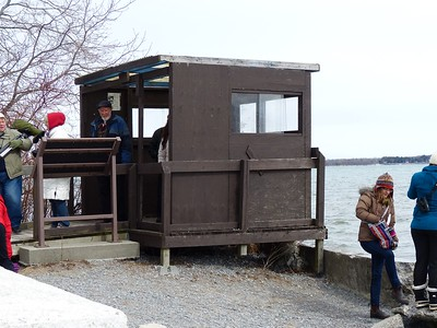 Viewing shelter located just east of the lighthouse - good place to set up a spotting scope and stay out of the wind!