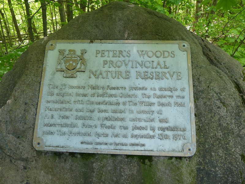 Peter's Woods Sign