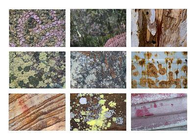Dangar textures