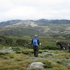 Looking towards Mt Kosciuszko