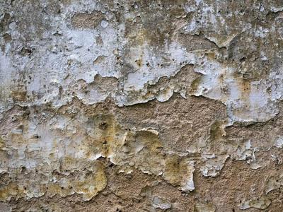 Crusty wall