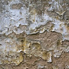 Crusty wall