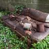 Old sofa