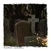 Newtown Cemetery 2