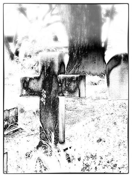 Newtown Cemetery 6