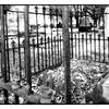 Newtown Cemetery 4