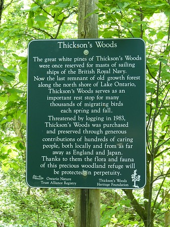 Thickson's Woods sign