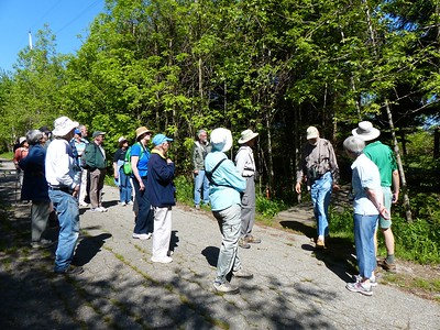 Dennis Barry provided ID and info on flora and fauna in Thickson's Woods.