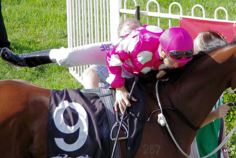 Wyong Races Mounting