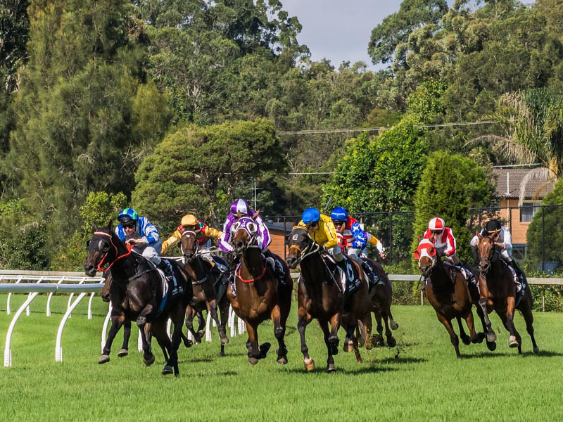 Wyong Races