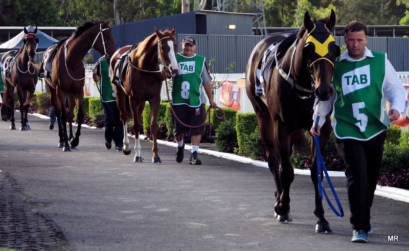 Wyong Races Parade