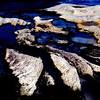 Rock Pools #1