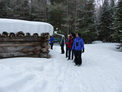 Logging Trail building