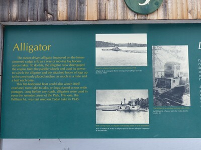 Alligator interpretive sign