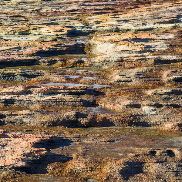 Rock Platform Colours