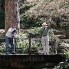 Photographing the pond