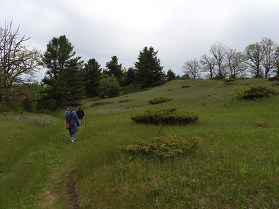 WBFN members walking the trail at Hazel Bird Nature Reserve