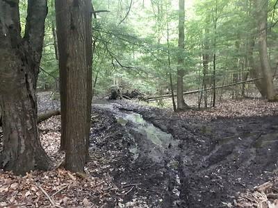 ATV crossings through ravine creek - Photo by Jenny Jackman