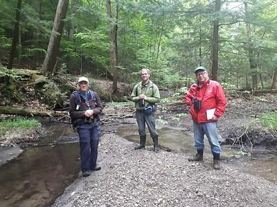 John Geale, David Geale & Frank Godfrey in Area 5 - Photo by Jenny Jackman
