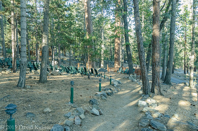 201510 Camp DeBenneville Pines