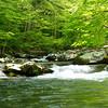 Slickrock creek enters the lake