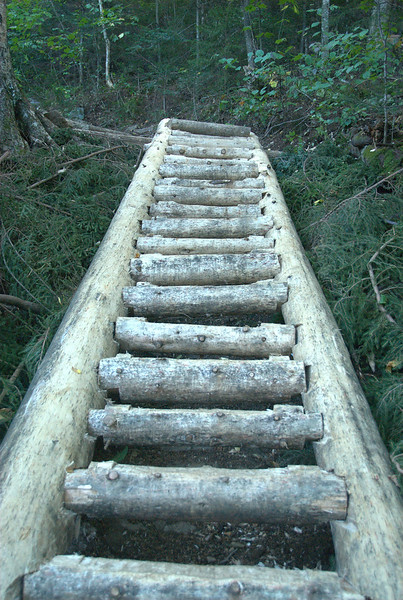 Thanks to the hard working crew that built this stairway over a muddy washout that was troublesome in good conditions and dangerous when wet. Trail crews are definitely under appreciated.