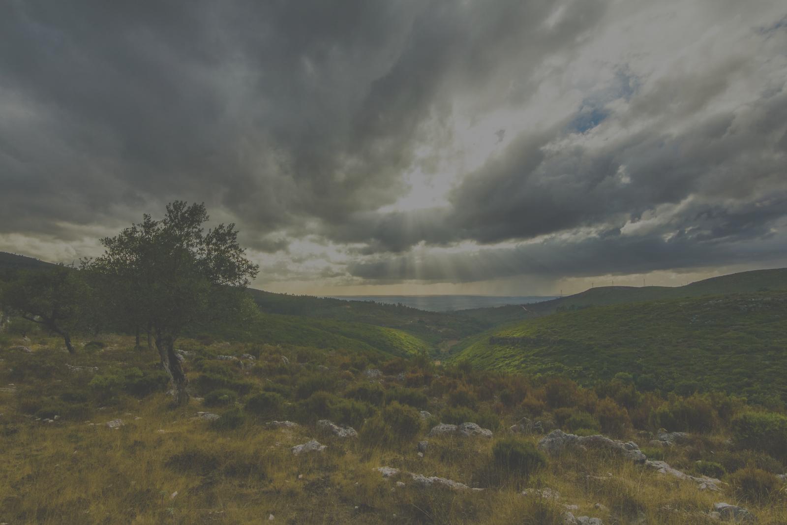 Peeking through the clouds